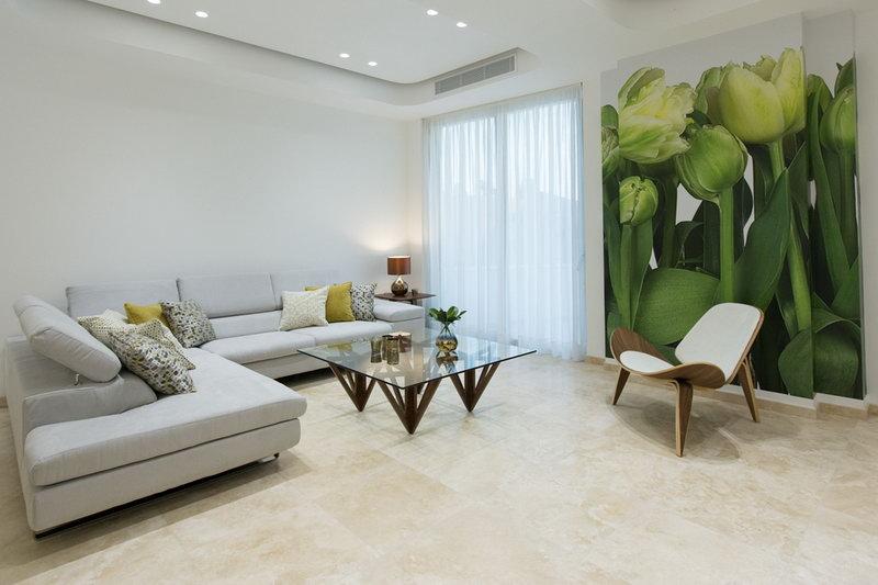 Alexander Suites 201